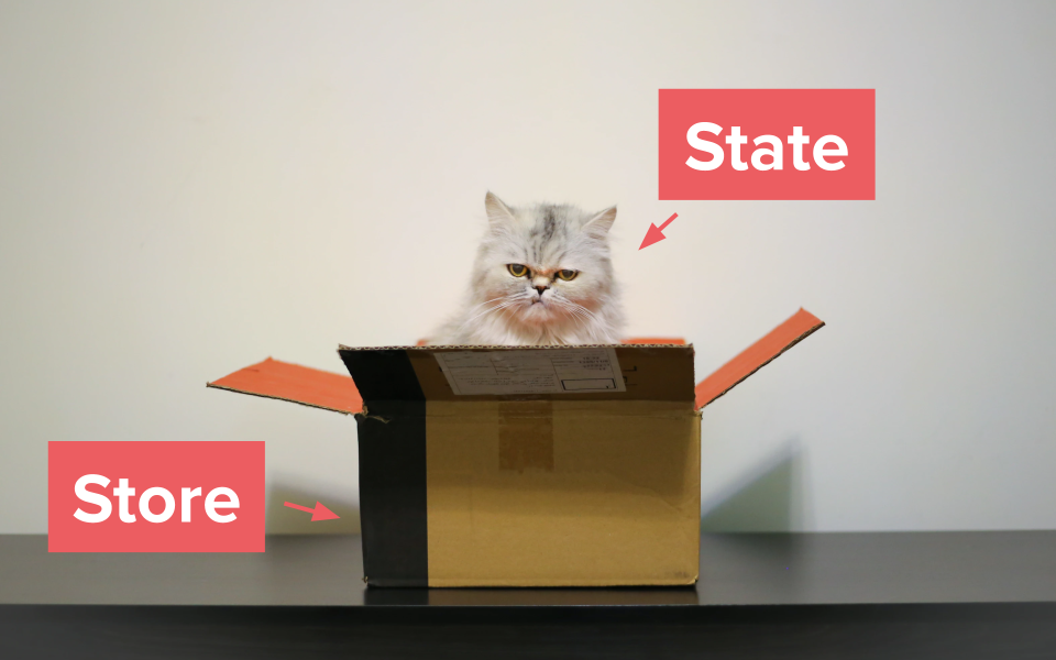 State / Store illustration with a cat in a box